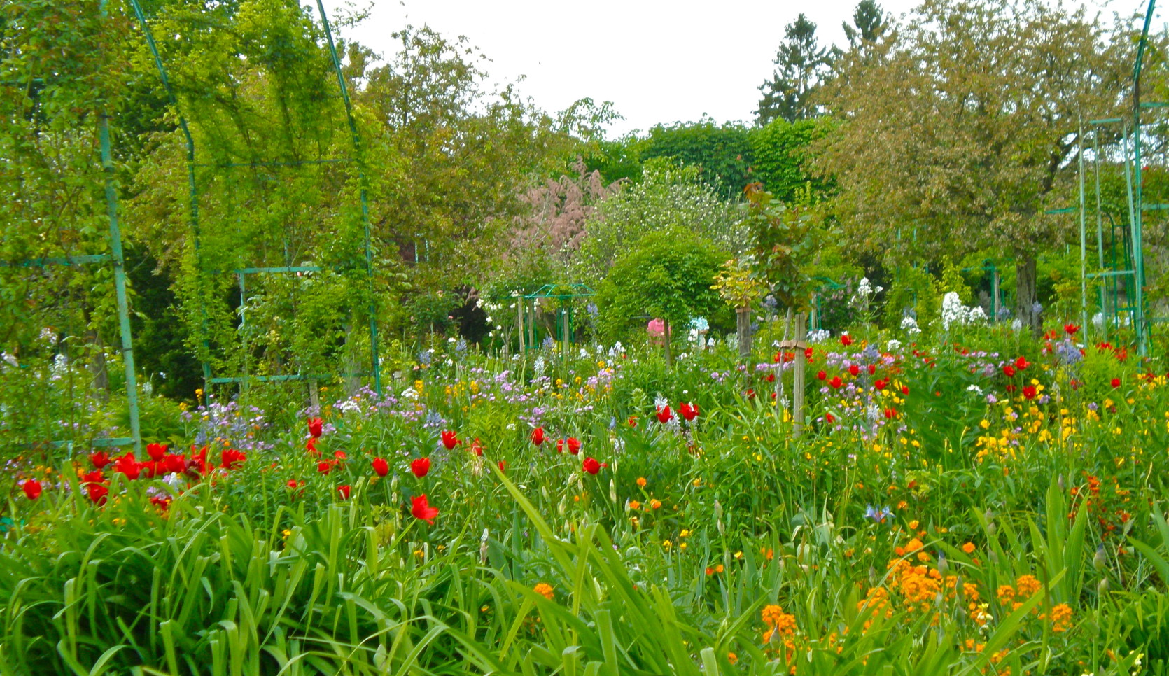 Jardins de claude monet giverny annectar 39 s room for Jardines de monet